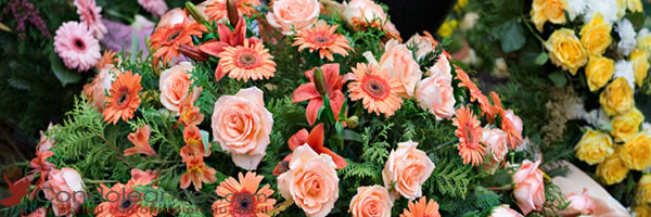 Les fleurs de deuil à offrir pour des obsèques.