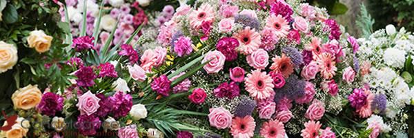 Les variétés de fleurs de deuil à choisir pour des obsèques.